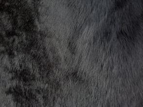 Черный кенгуру